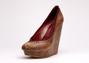 shoe-760x547